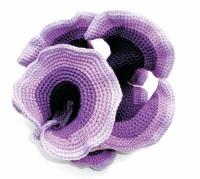 Purple hyperbolic plane