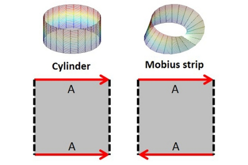 cylinder-mobius